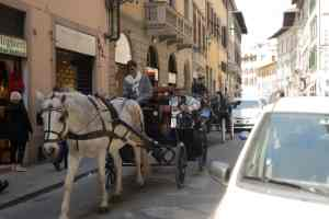 Horse and Carriage ride around Florence Italy