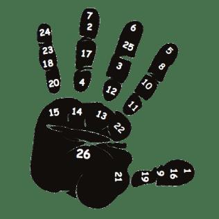 Finger-SEL Relationship