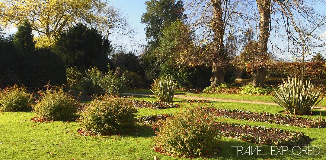 Charles Darwin House - Garden
