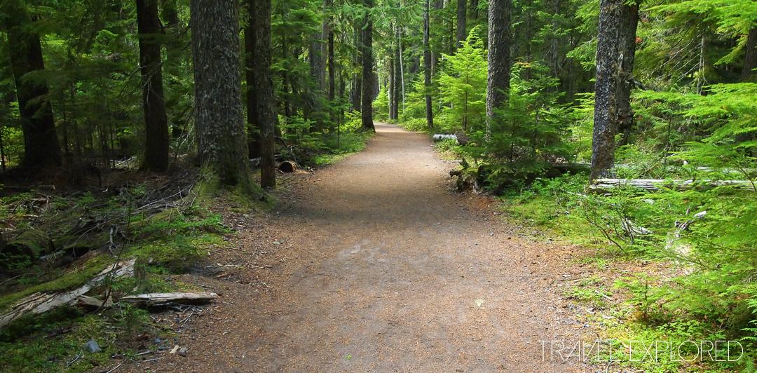 Mt Rainier - Carter Falls Pathway