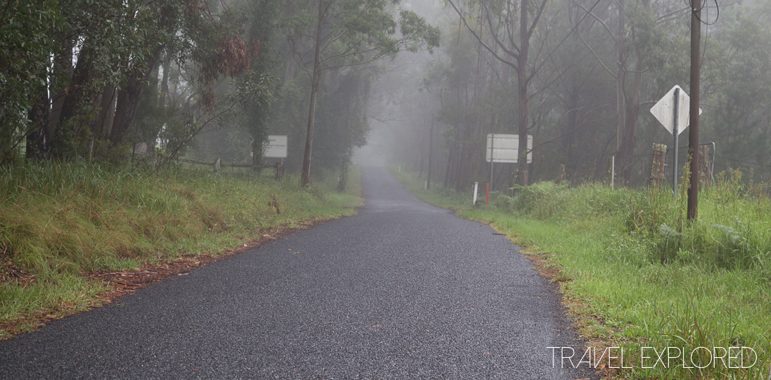 Early Morning Foggy Roads near Stanthorpe