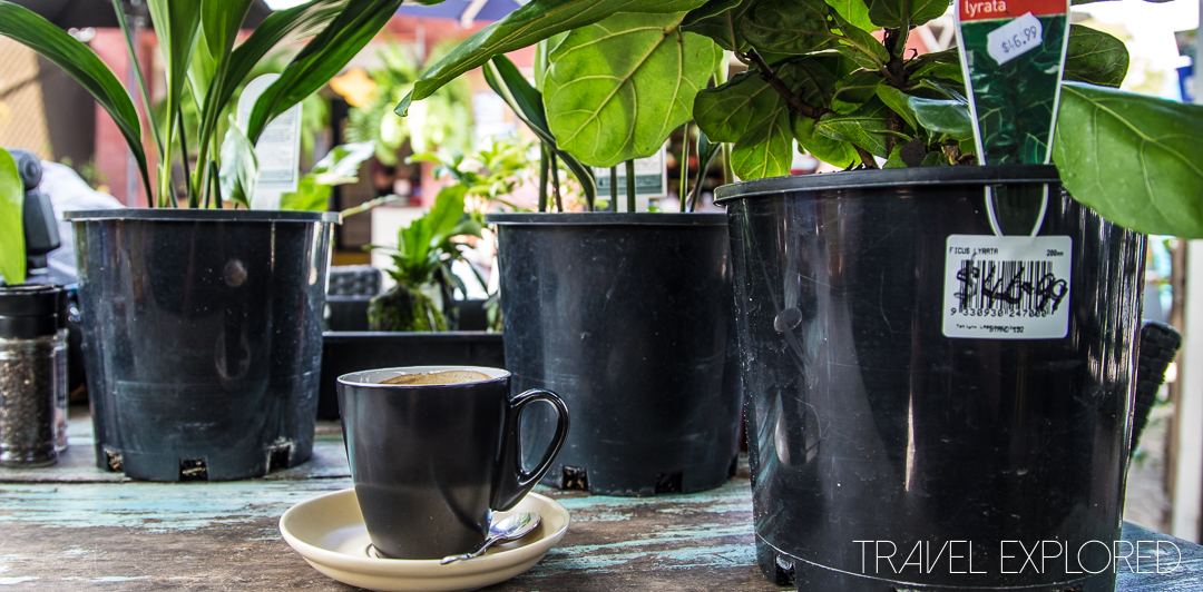 Coffee - The Barn, North Stradbroke Island
