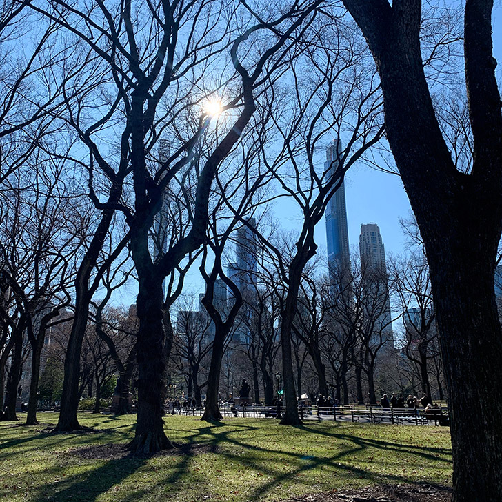 10+ things to see + do in Central Park - Travel for a Living