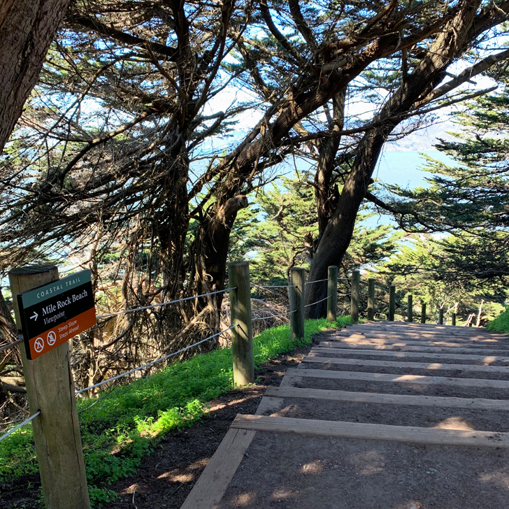 Along the Coastal Trail in San Francisco - Travel for a Living