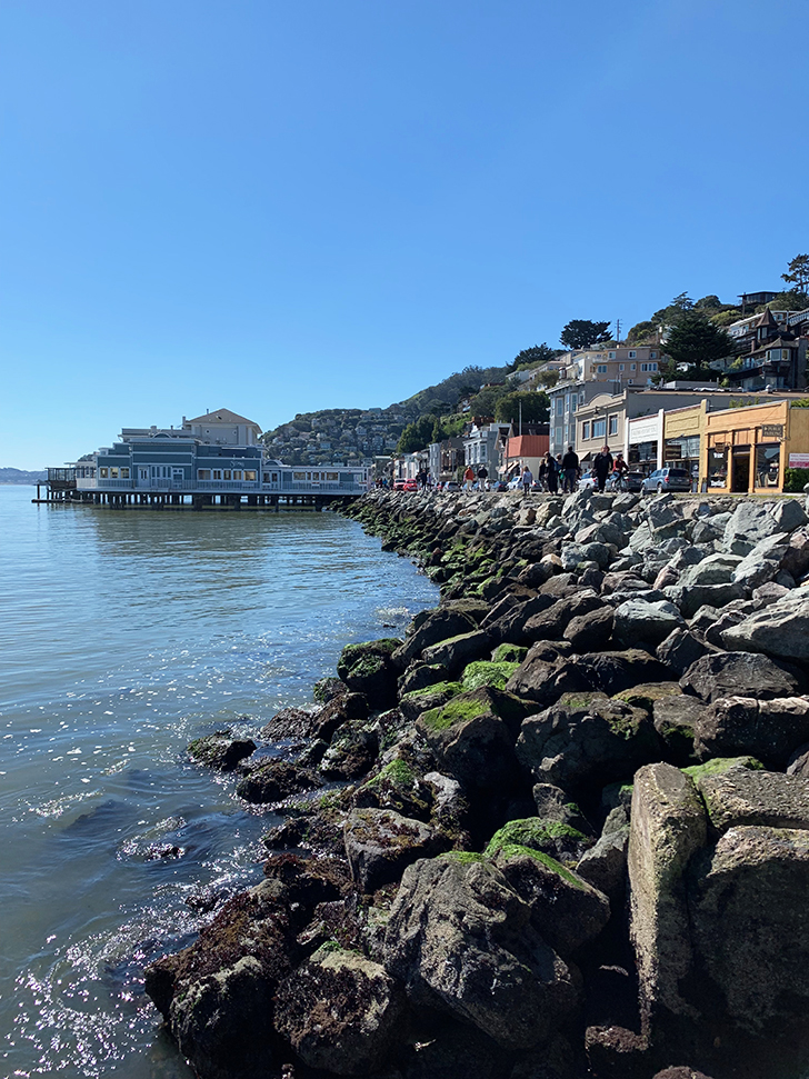 Day Trip from San Francisco to Sausalito by bike - Travel for a Living