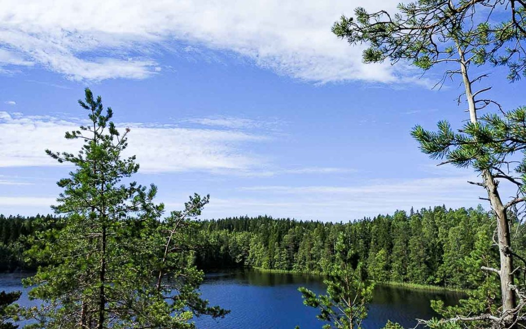 A Tale of Finland and Fast Friends (A Day at Mökki)