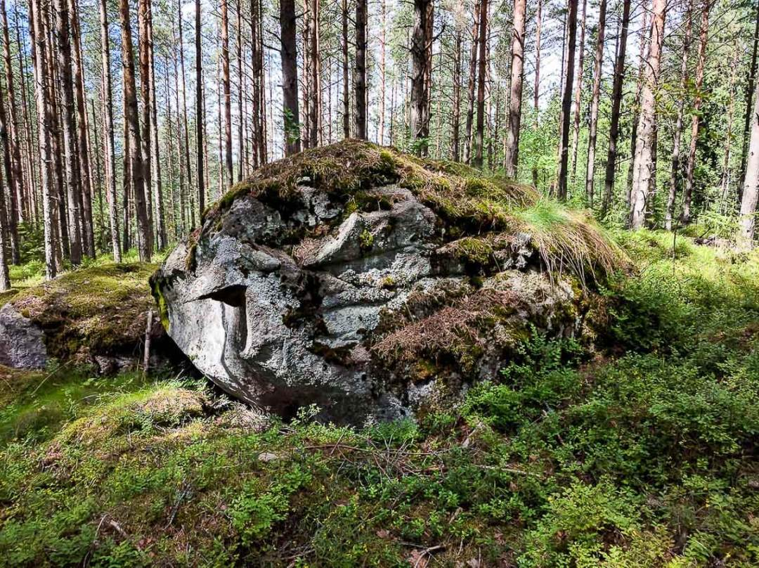 boulder in the forest in Finland