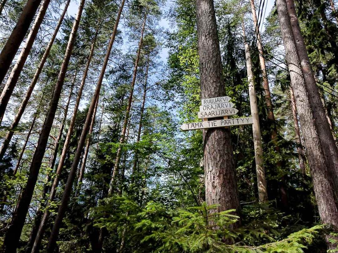 trees with signs in Finnish