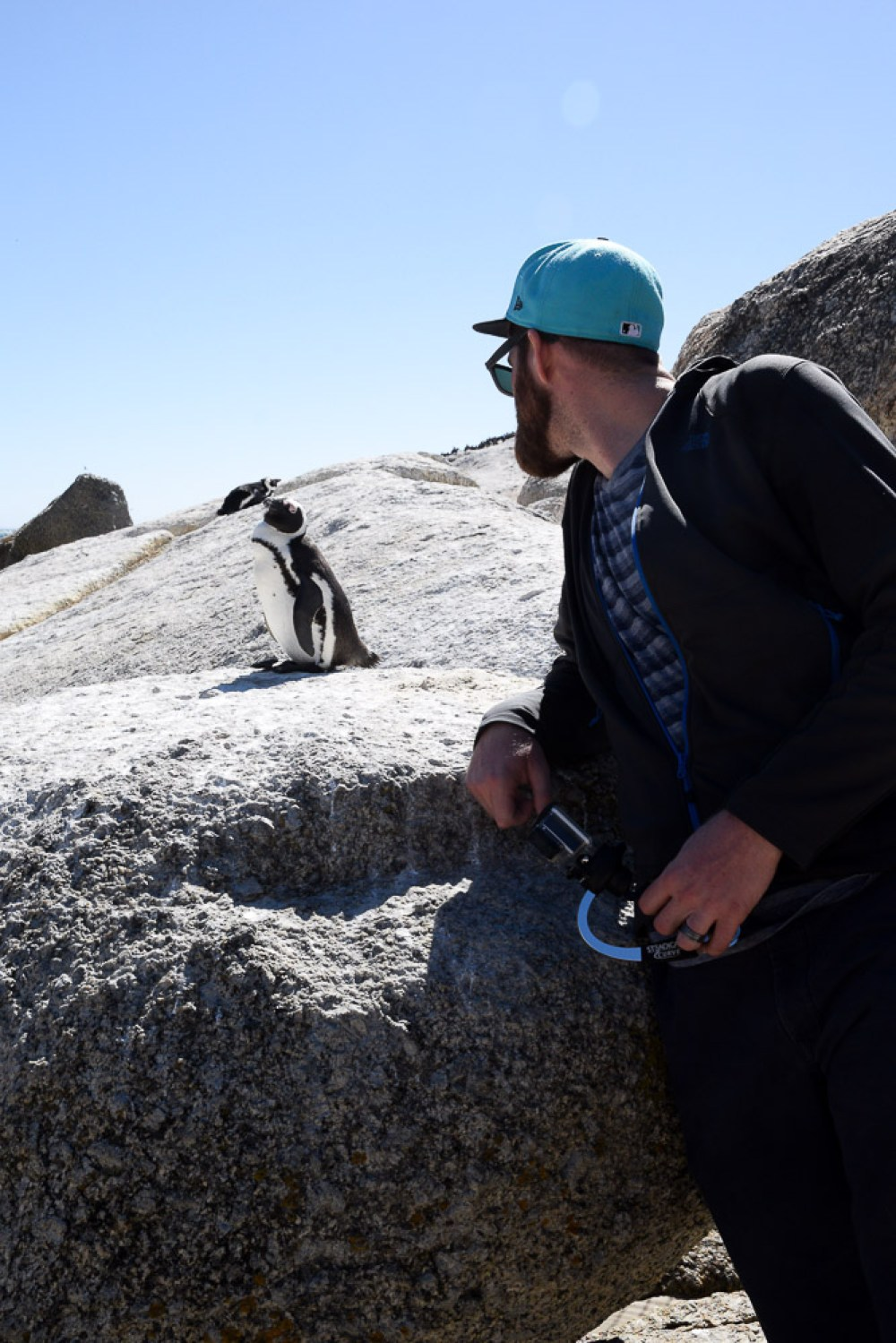 man up close with african penguin
