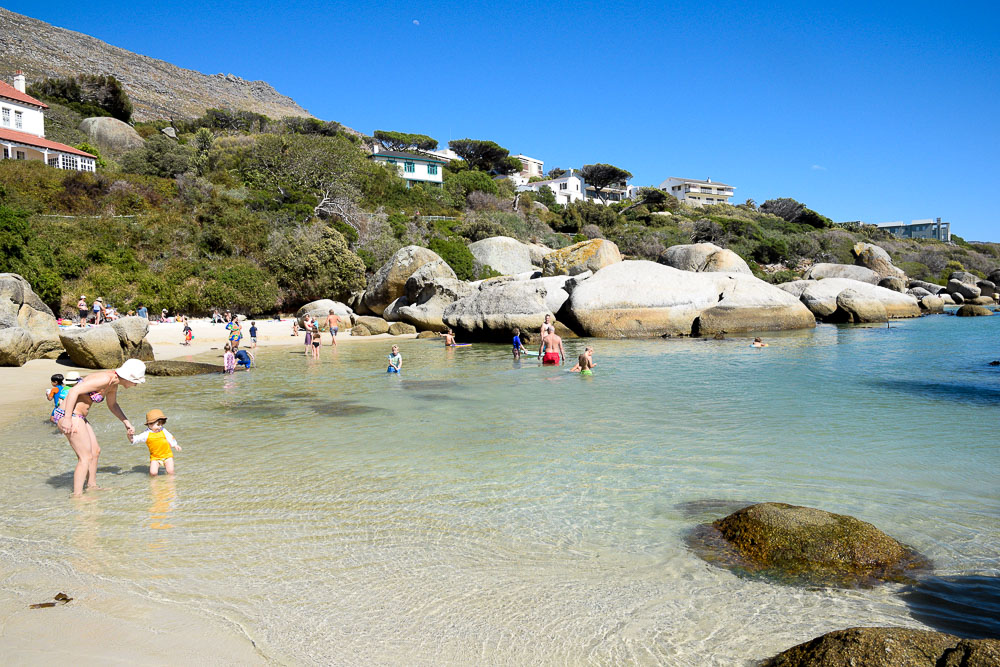 people swimming at boulders beach in Simon's Town