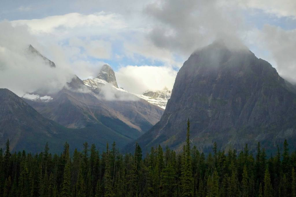 The rocky mountains behind a forest