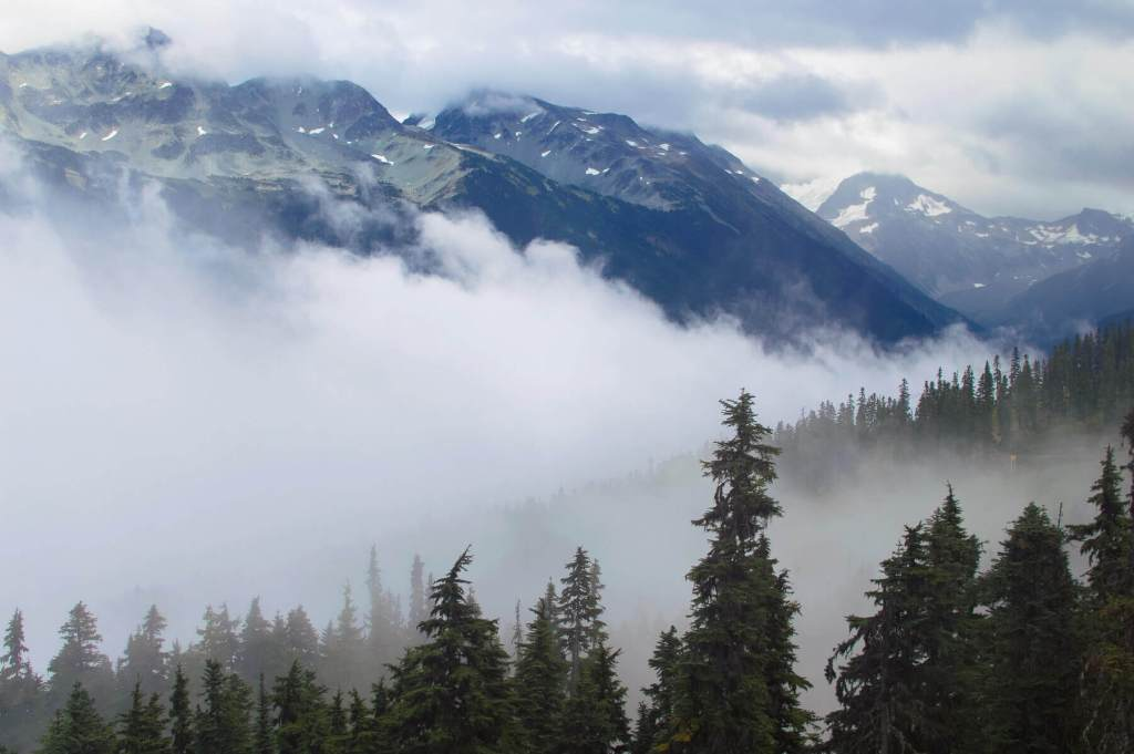 Clouds in the valley between Blackcomb mountain