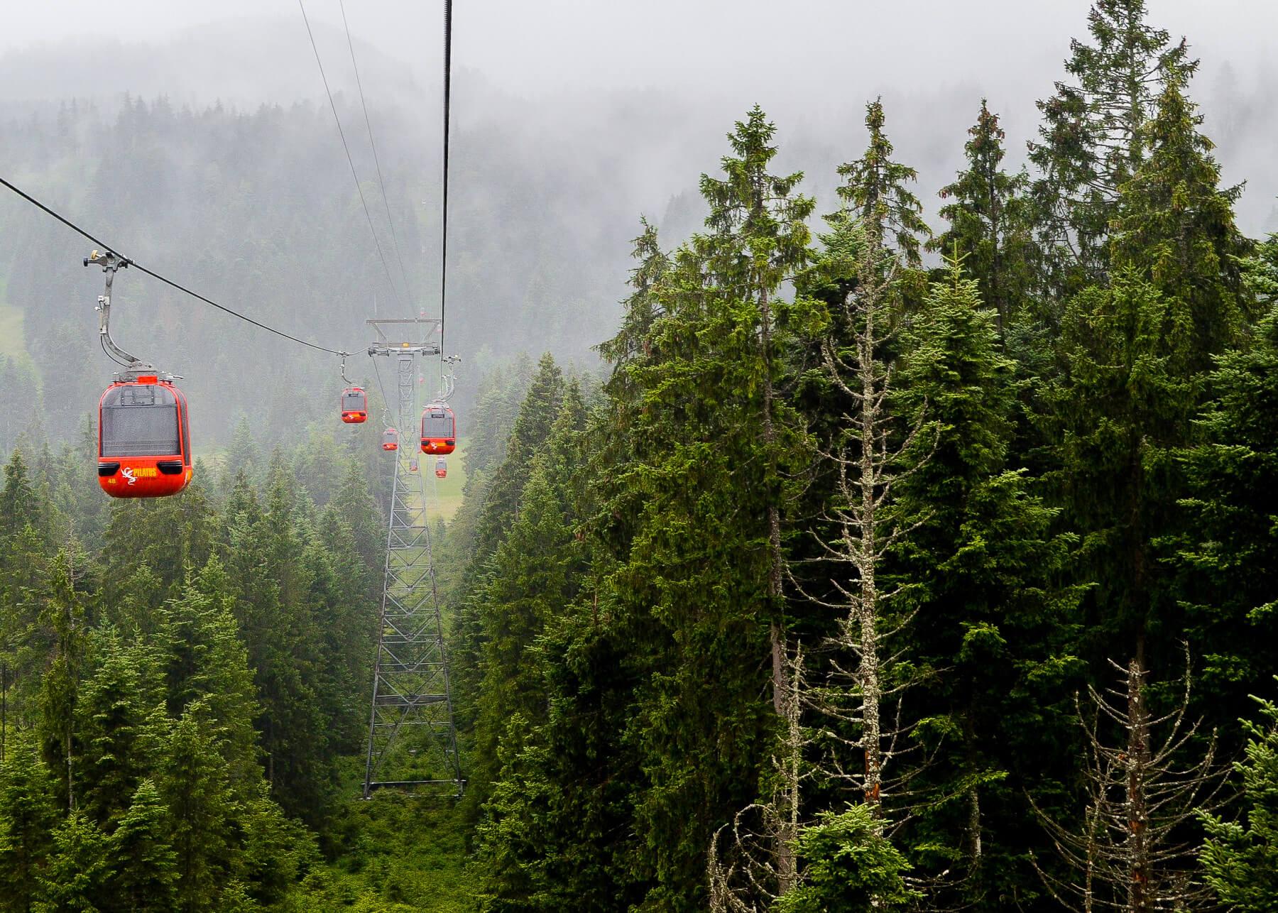 red gondolas drifting through forest