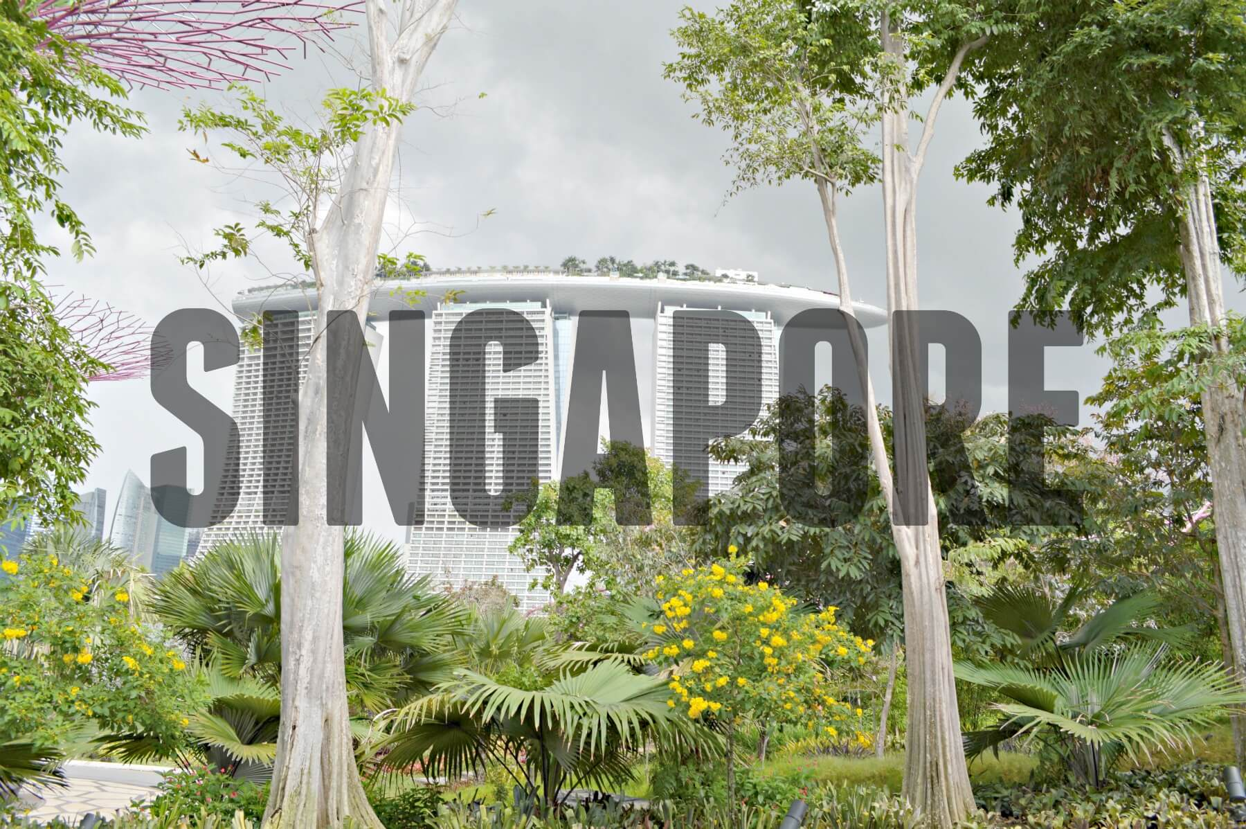 'SINGAPORE' (Tall trees and huge hotel with boat)