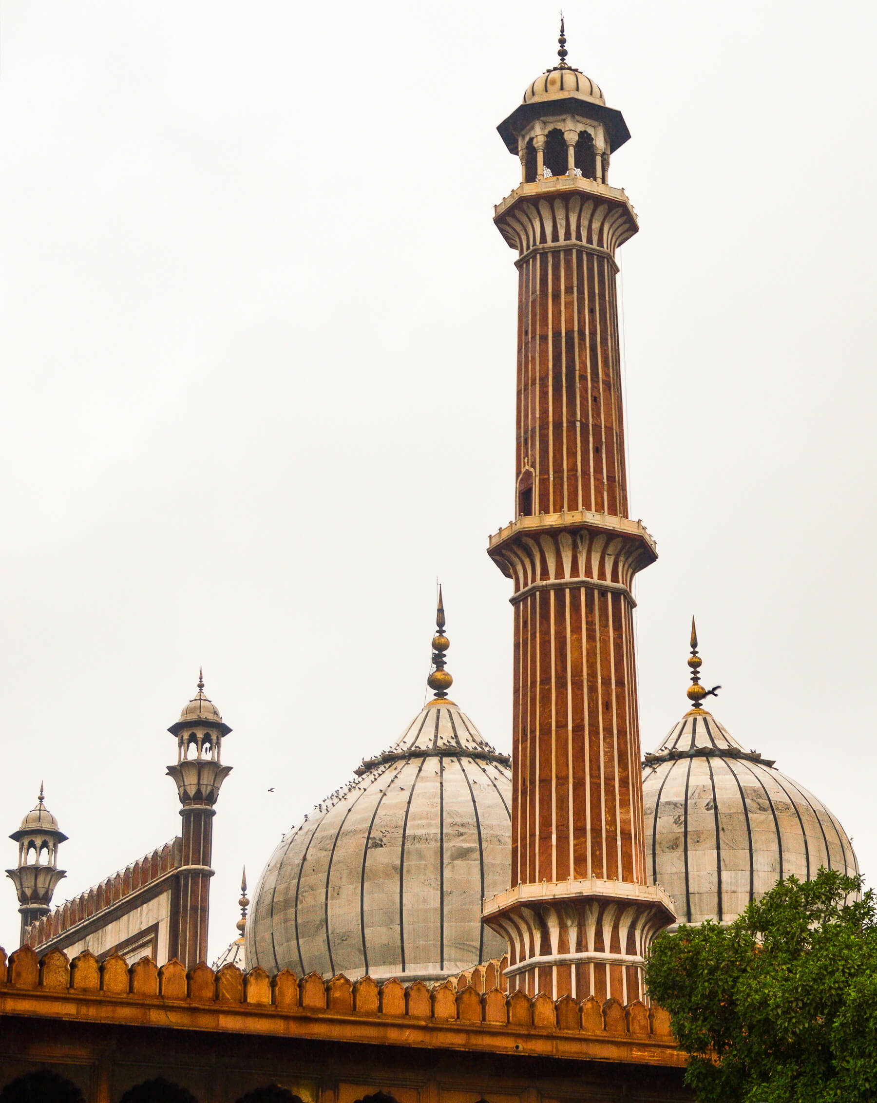 Rounded rooftop domes and pillars of a Red palace in India