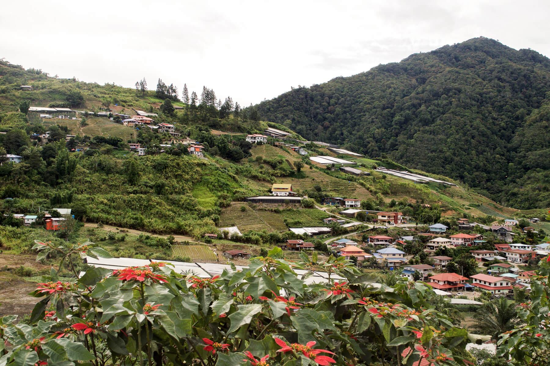 Colourful village on a hillside in Borneo