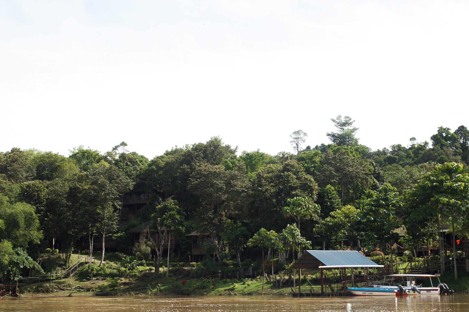 Myne Resort on the Kinabatangan River