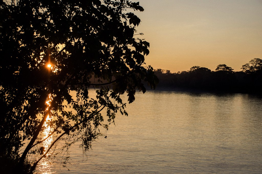 The Madre de Dios River with the setting sun shining through a gap in the trees