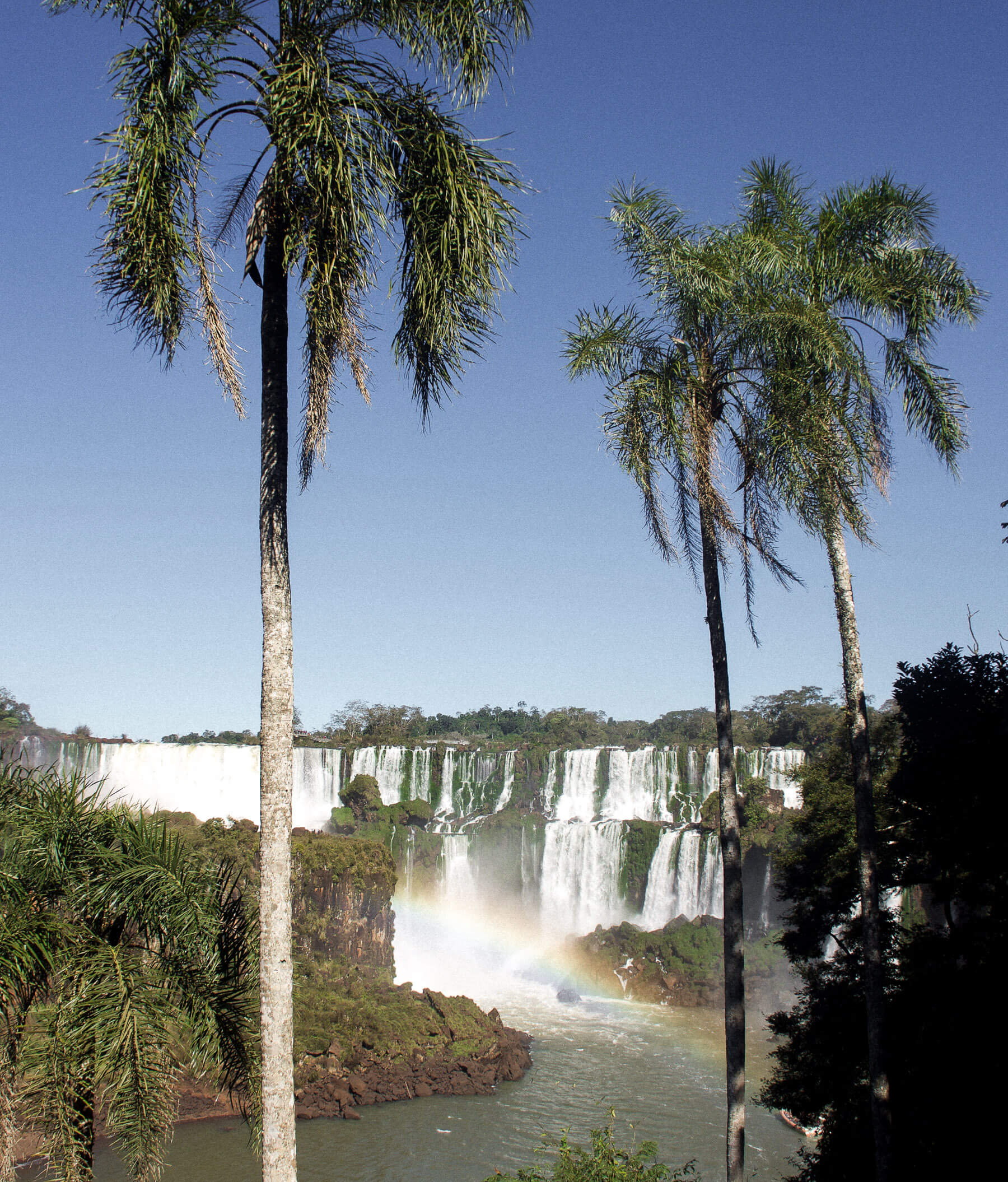 A MAGICAL DAY AT IGUAZU FALLS