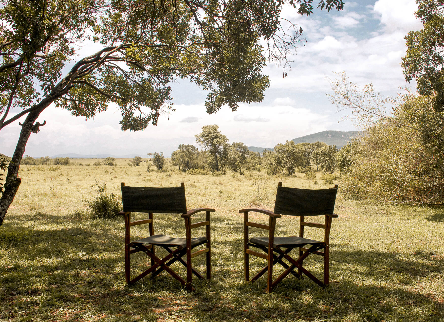 2 chairs under a tree overlooking the plains of the Maasai Mara - The best of the masai mara camps