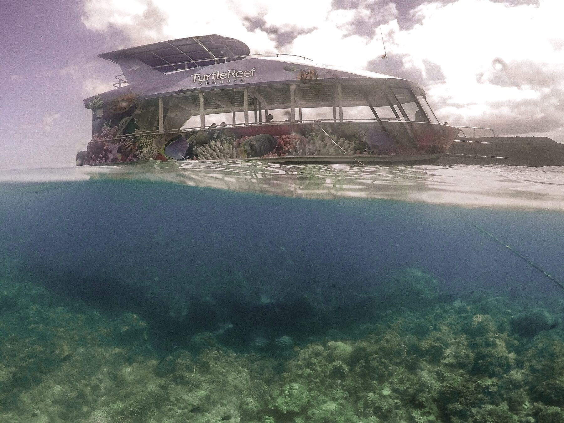 Photo of turtle reef cruise ship with the water underneath