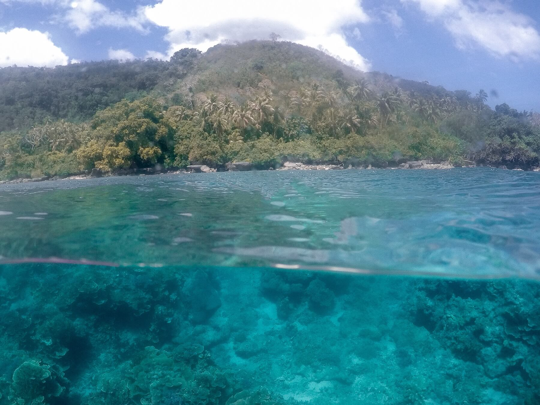 A photo with half underwater with the coral, and half above with the coastline