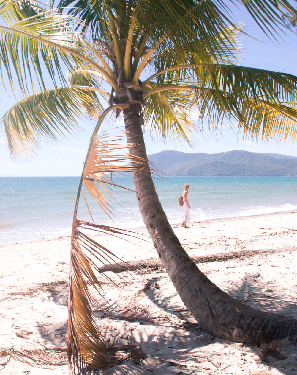 Girl walking behind palm tree on Cape Tribulation Beach