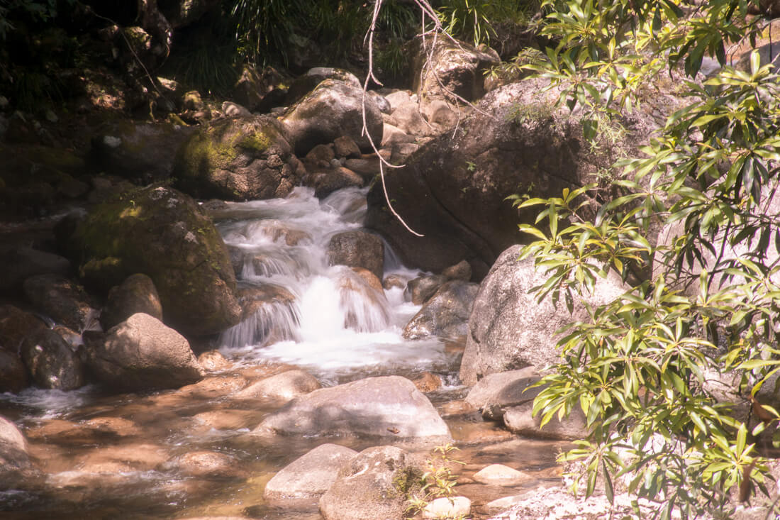 A small waterfall over rocks at the Mossman Gorge