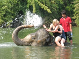 Tourist Girls Bathing on Elephant, Chiang Mai - Thailand