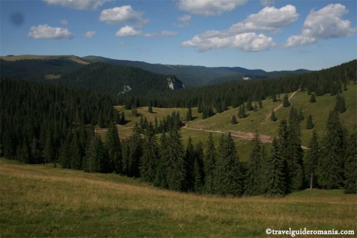 Parcul Natural Apuseni - zona Padis