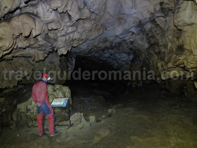 The museum of Ursus Spealeus chamber
