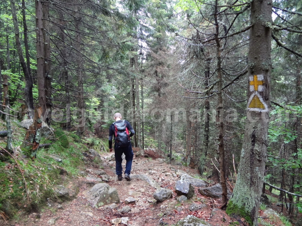 Hiking in Apuseni mountains - going to Bohodei waterfall