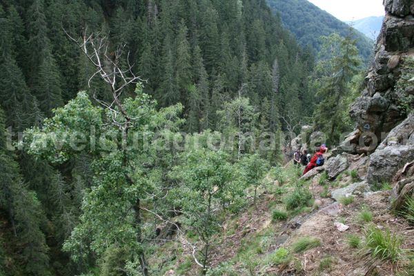 Trekking in Apuseni mountains - Bohodei waterfall track