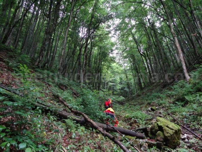 intoarcerea pe traseul turistic dinspre Valea Sighistelului