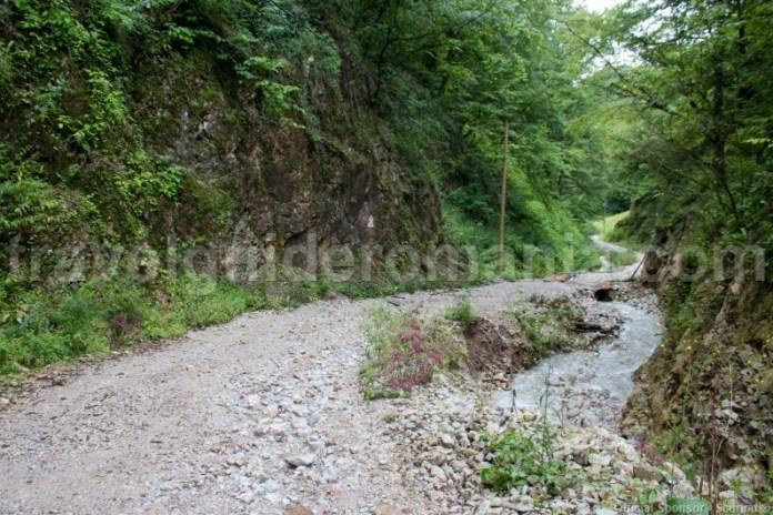 Drum de acces spre pestera Meziad