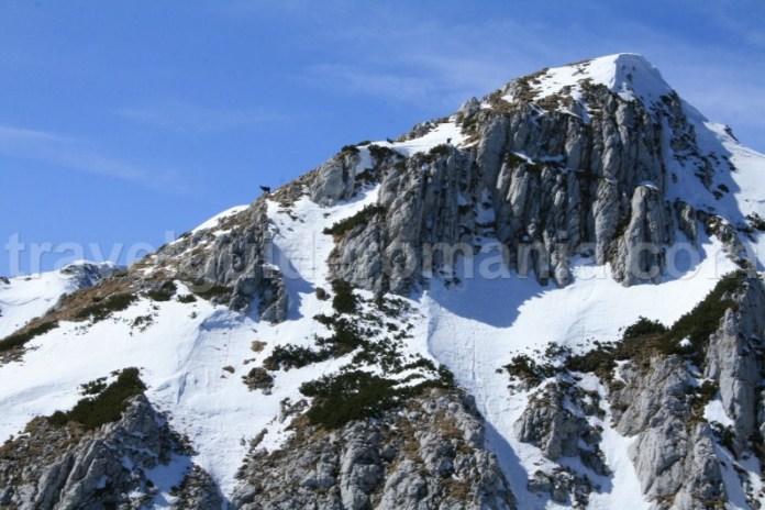 Trekking de iarna - Muntii Piatra Craiului