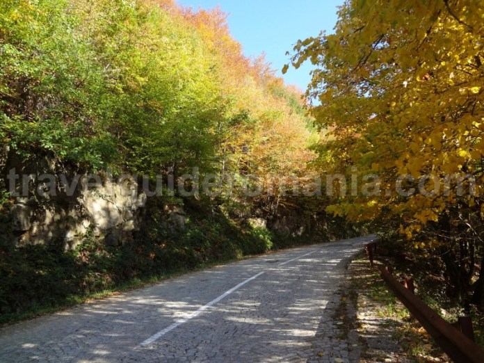 Drumul Budureasa - Stana de Vale
