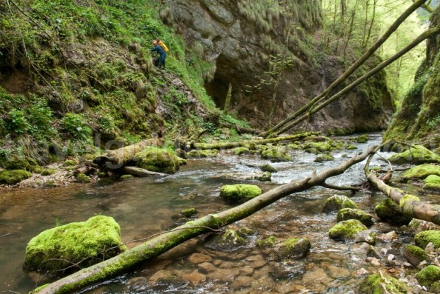 Traseu turistic in Cheile Galbenei - Muntii Apuseni