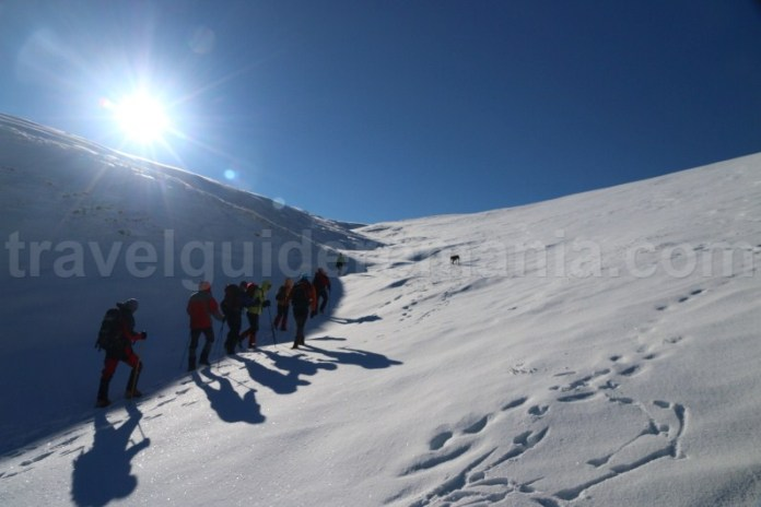 Ghid montan Romania - ascensiune Muntii Godeanu