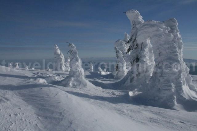 Excursii montane pentru incepatori - Muntii Vladeasa