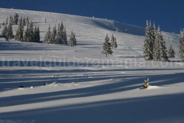 Unde sa schiezi in Muntii Apuseni - Varful Vladeasa