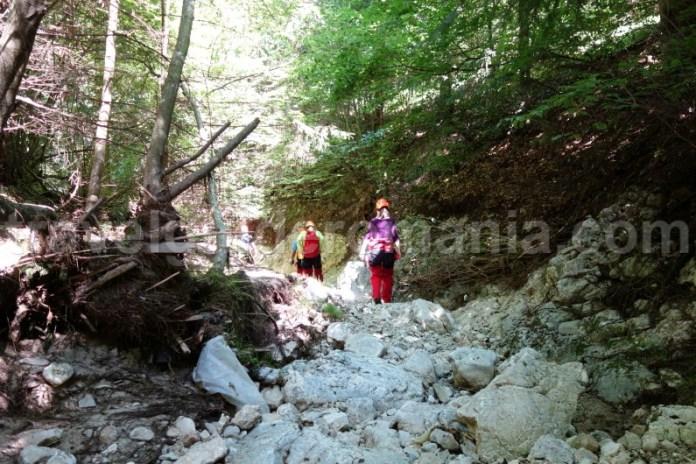 Turisti straini in zona Bran - Moeciu