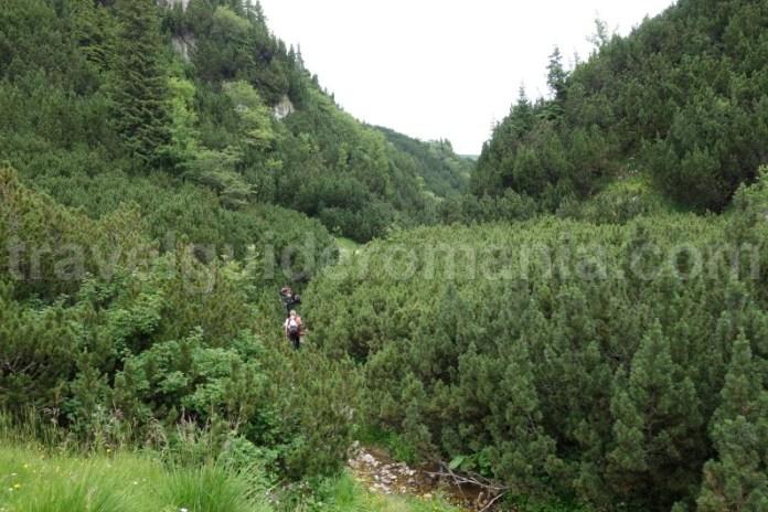 trasee-turistice-in-muntii-bucegi-valea-horoabei