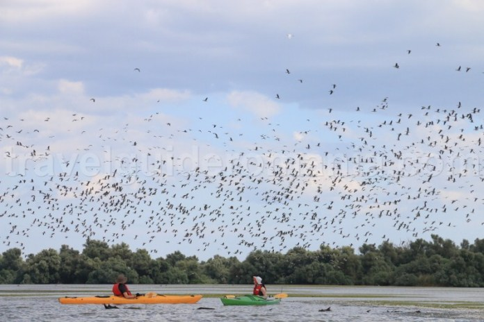 lacul-nebunul-rezervatia-naturala-Delta-Dunarii