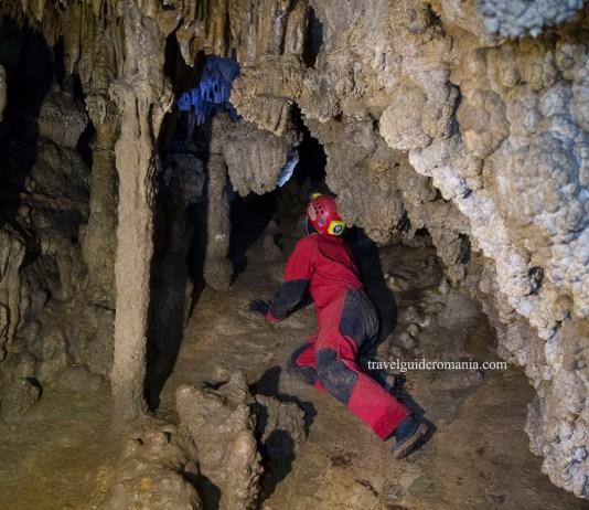 Pestera Sugau ( Sugo Barlang )