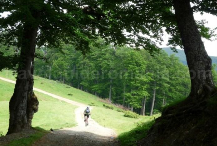 Mountain biking Apuseni