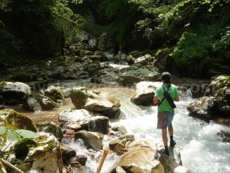 Excursii in muntii Apuseni