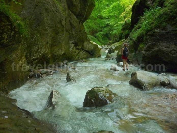 Munti din Romania - Apuseni