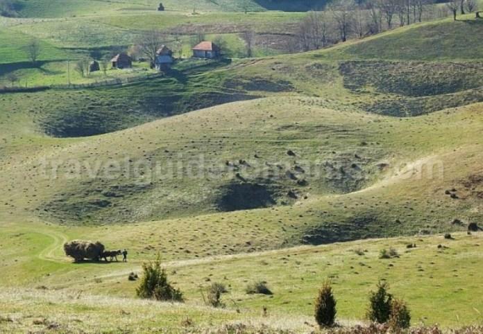 doline-Padurea-Craiului-Apuseni