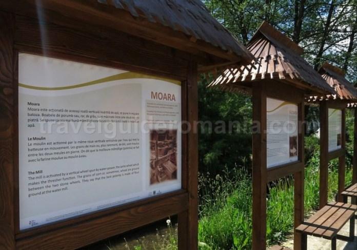 Destinaţia ecoturistică Mara Cosău Creasta Cocoșului Maramureş sarbi